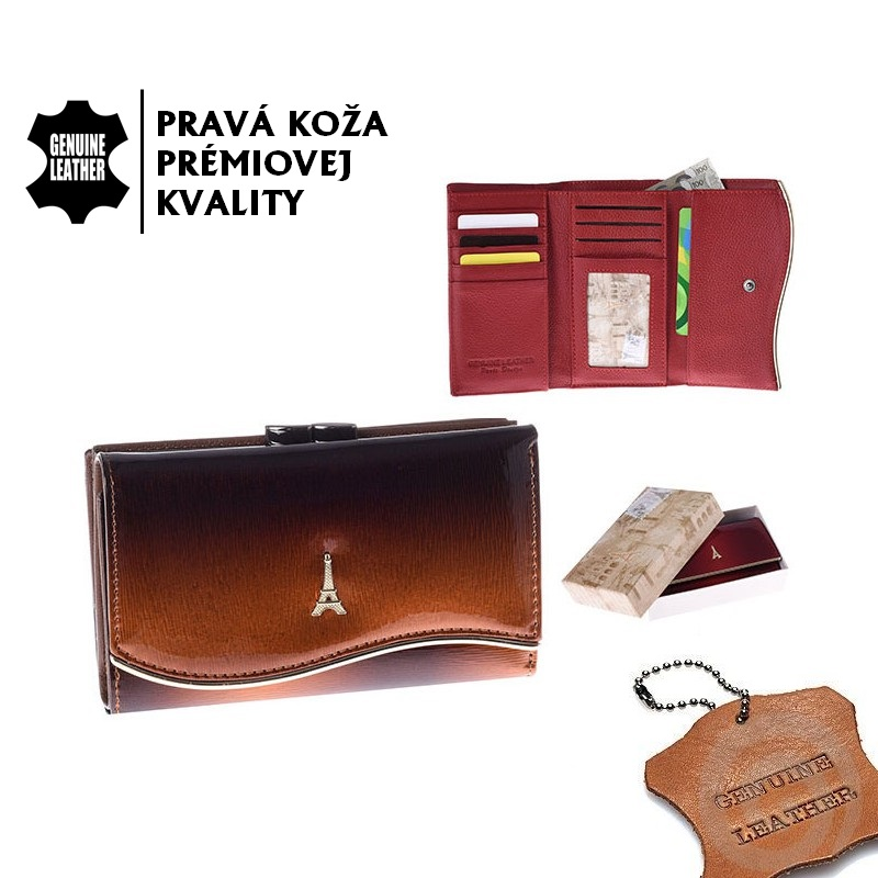 PARIS 74108-DSHK Brown